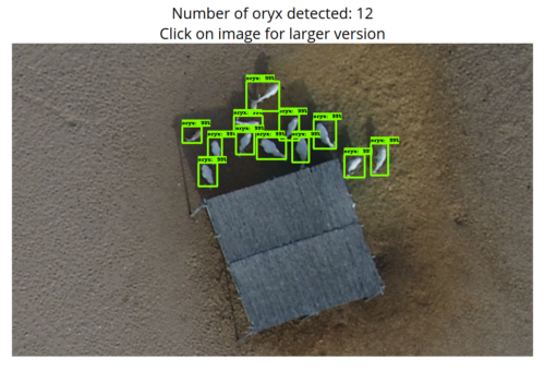 ORYX Detection