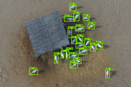 arabian oryx detection counting 